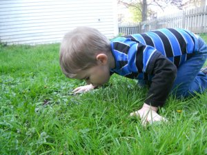 He wasn't really tasting the grass. He was popping a bubble with his tongue.