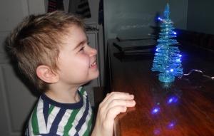 A mini Christmas tree with lights-perfect!