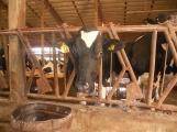 10-1-16-farm-tour-013